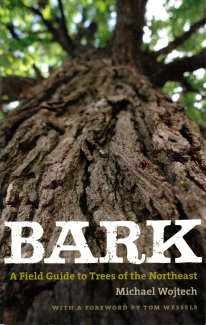 Bark: A Field Guide to the Trees of the Northeast book cover