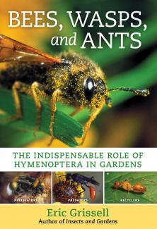 Bees, Wasps, and Ants book cover