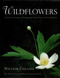 Wildflowers book cover