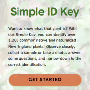 Go Botany Simple ID Key image.