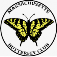 Massachusetts Butterfly Club logo.