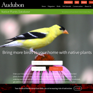 National Audubon Society Native Plants Database.